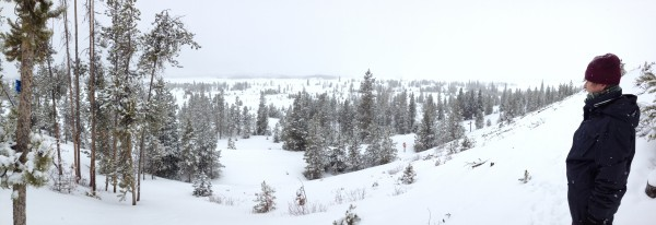 the view, snowshoeing