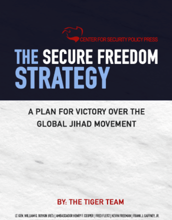 Secure Freedom Strategy