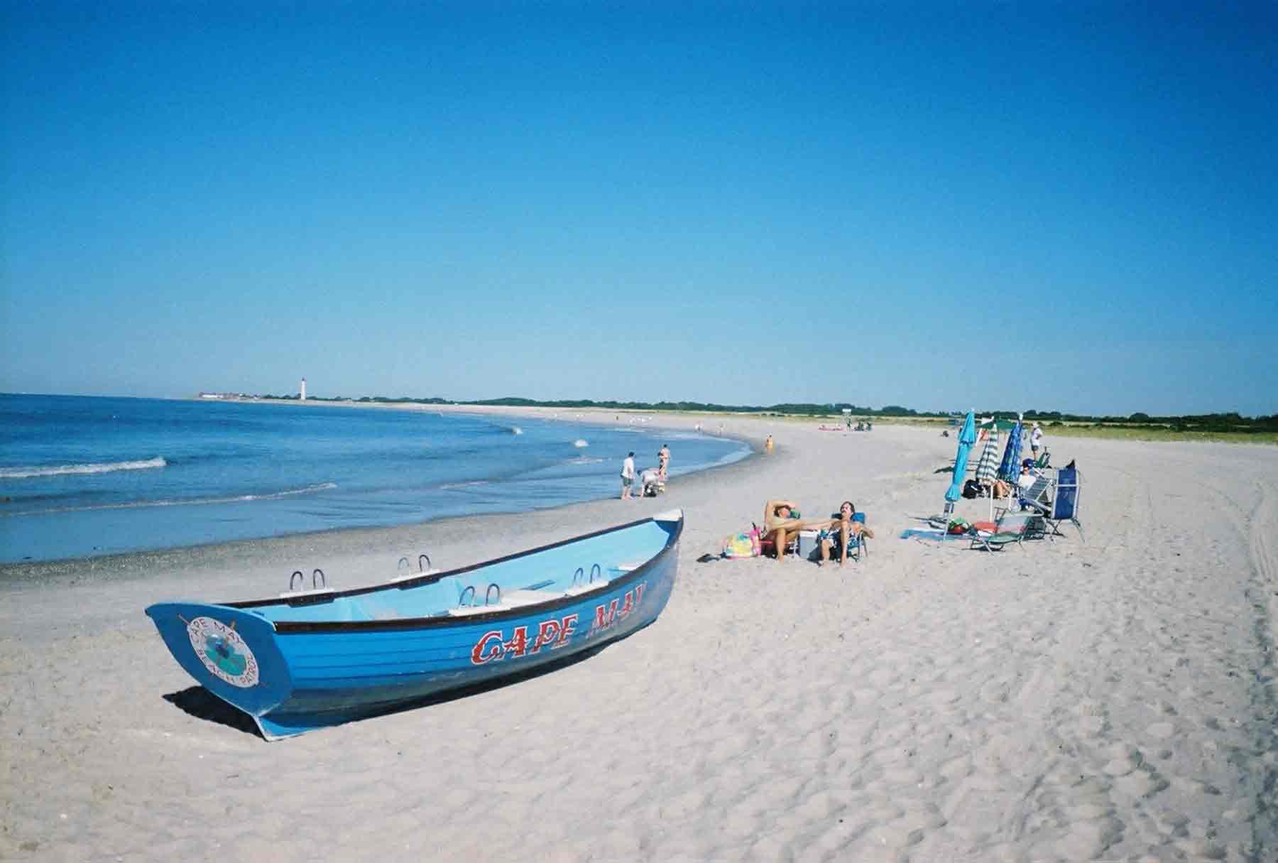 Hd Great White Shark Wallpaper Seagulls Jersey Shore Vacationing Blog