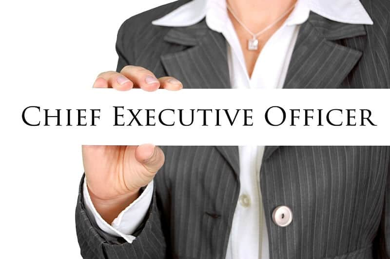 CEO Job Description, Qualifications, and Outlook Job Descriptions WIKI