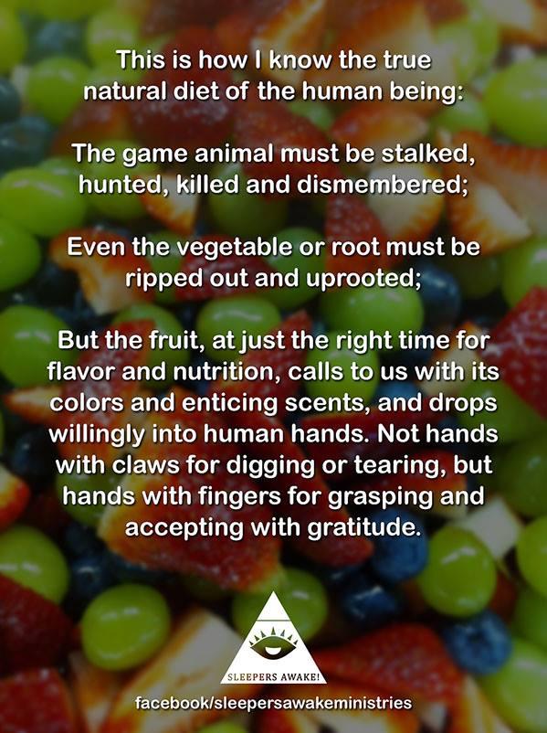 fruit humans