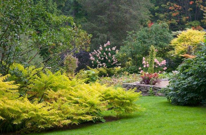 How to Design your Garden Landscape with Margaret Roach The joe - designing your garden