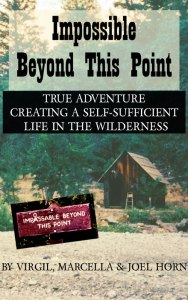Impossible Beyond This Point cover
