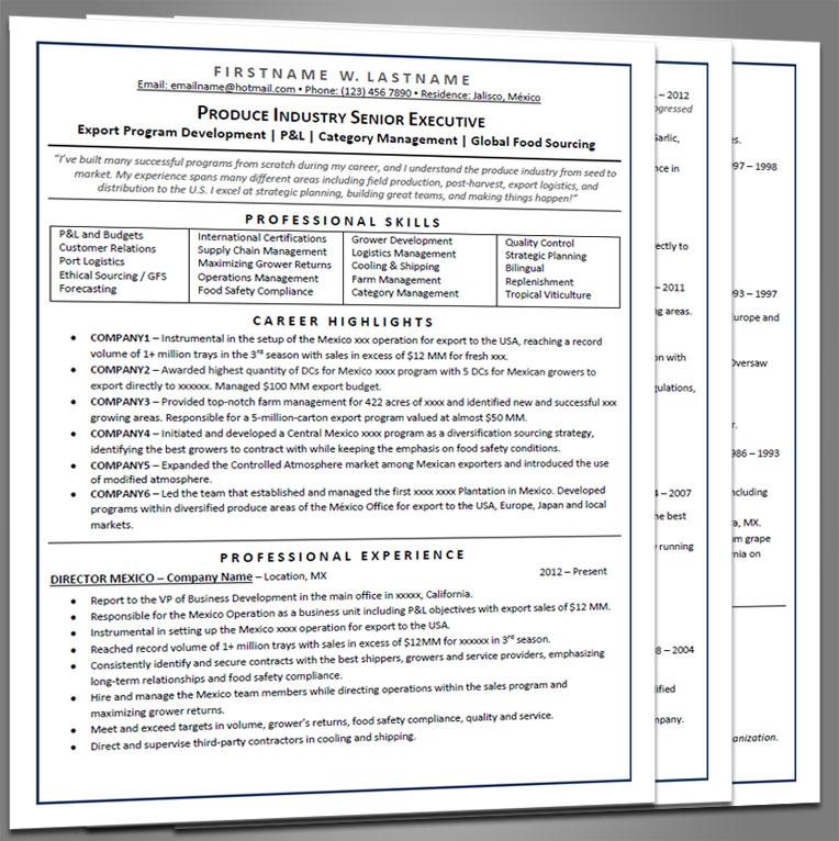 Executive Resume - Joe Pro Resumes