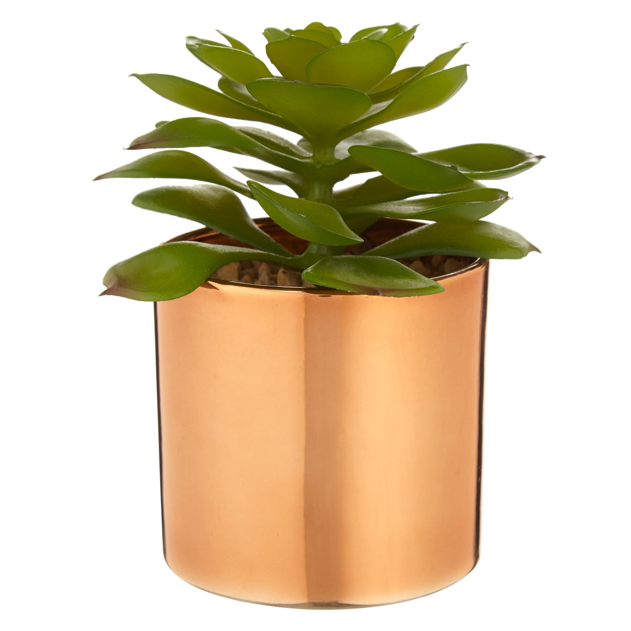 Blumentopf Shop John Lewis & Partners Artificial Cactus In Metallic Pot, 5