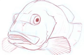 Rockfish B 8_1