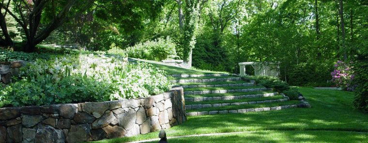 Westchester landscape and pool design stone stairs and dog