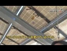 太陽光発電メンテナンスの必要性 #太陽光発電 #エコ #followme