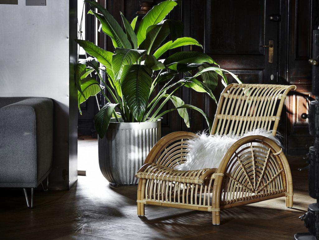 Idee Deco Jardin Hiver | Idee Decoration Noel Exterieur Maison ...
