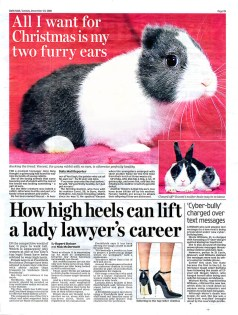 20081223 Daily Mail p19_950px by .