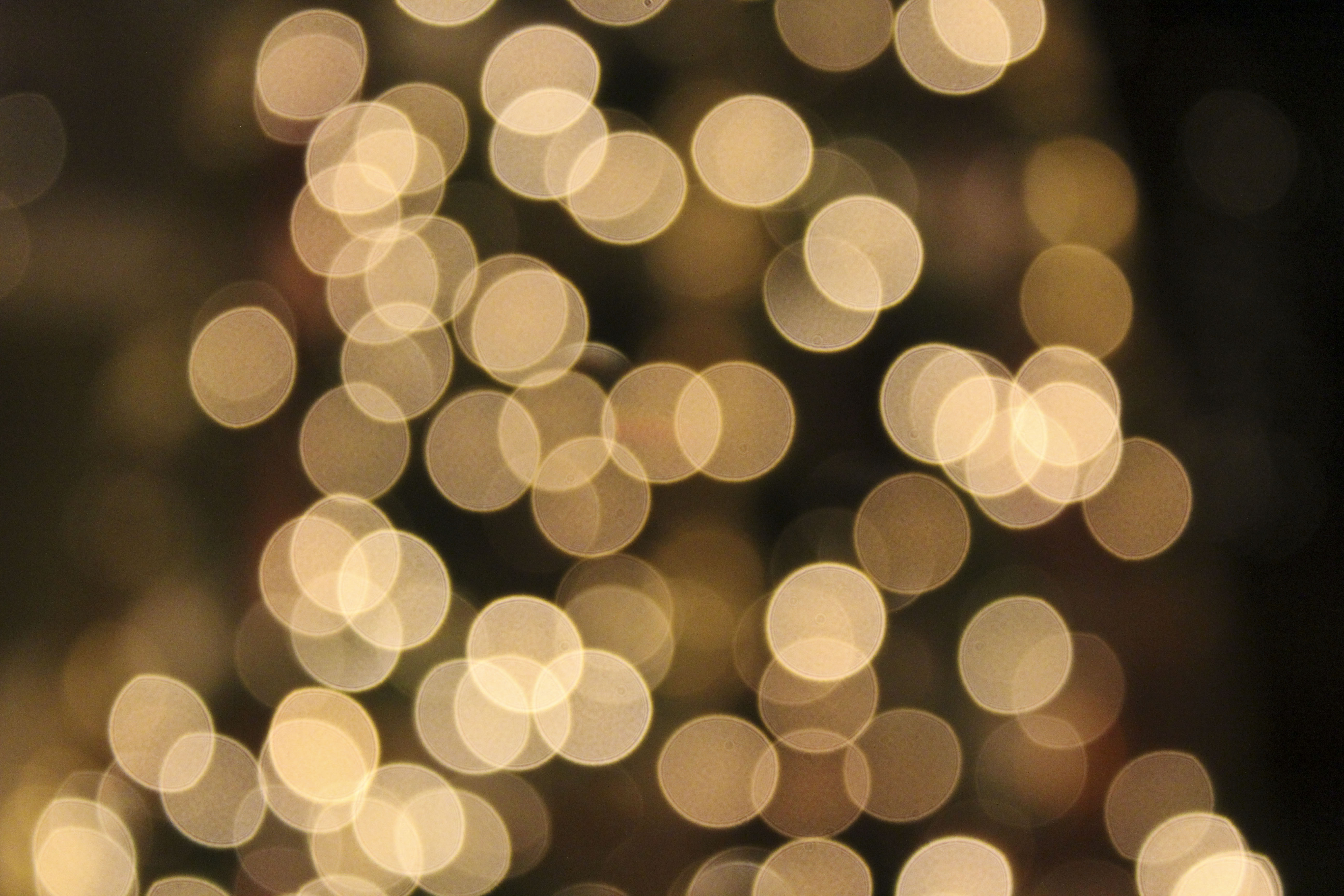 Free Photo Christmas Bokeh Abstract Blur Blurry Free Download Jooinn