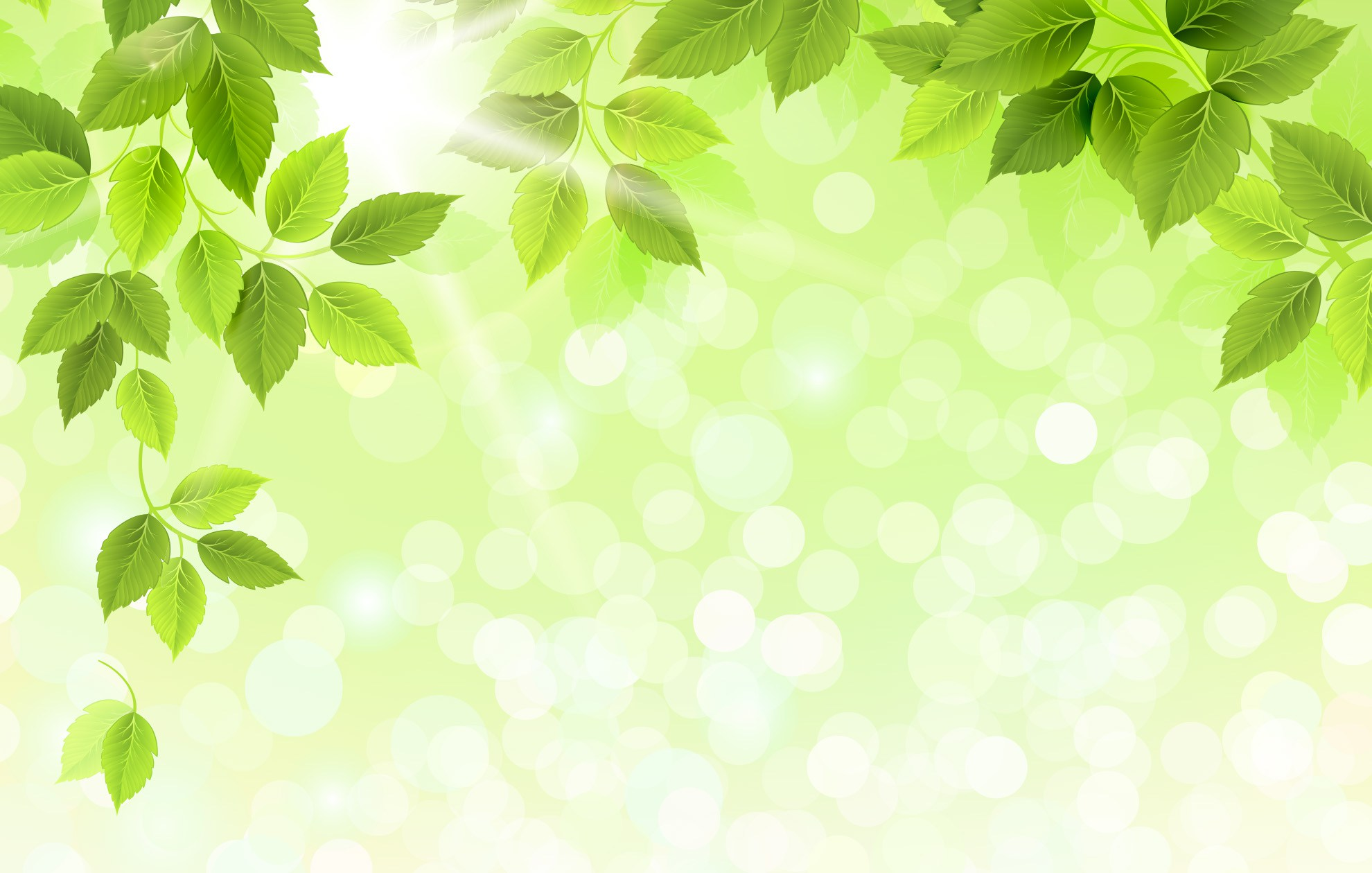Free Fall Wallpaper Pics Free Photo Green Leaves Background Green Light Leaf