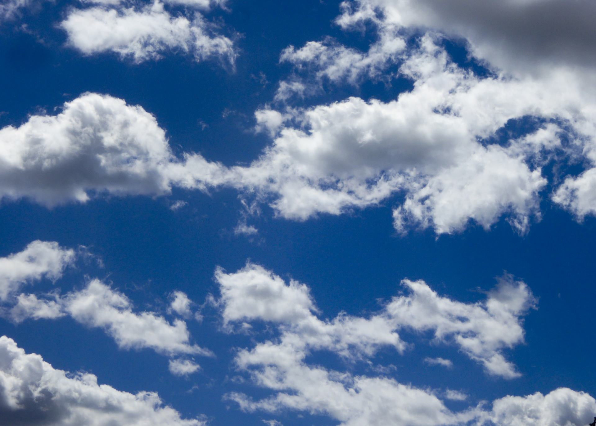 Free 3d Fall Wallpaper Free Photo Whie Clouds Sky White Skies Free