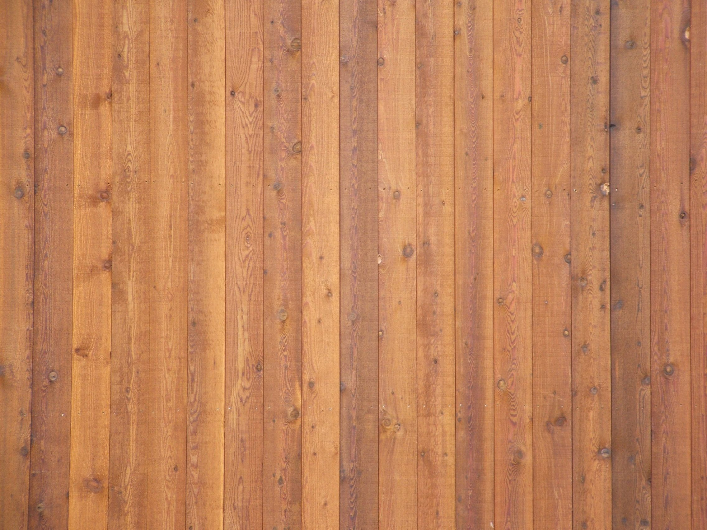 Wall With Wood Free Photo Wooden Wall Texture Wall Wood Tree Free