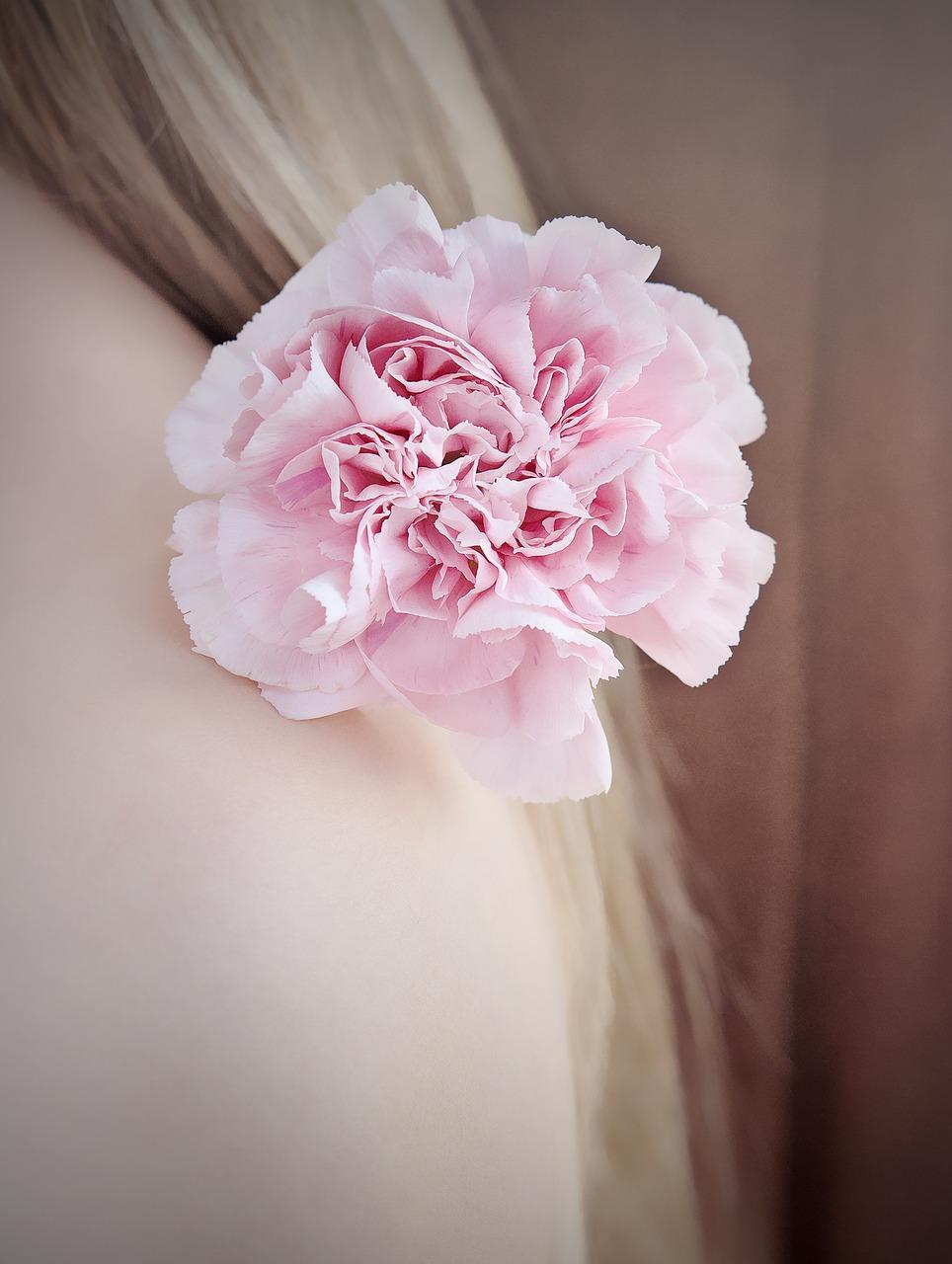 flower-1390664_1280