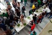 El Ifapa relanza el tirabeque como alternativa