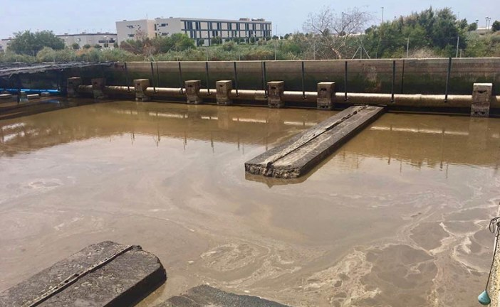 Los regantes sin agua del Bajo Andarax piden agua desalada y de pozo