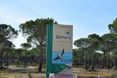 Lo que el fuego se llevó en Doñana