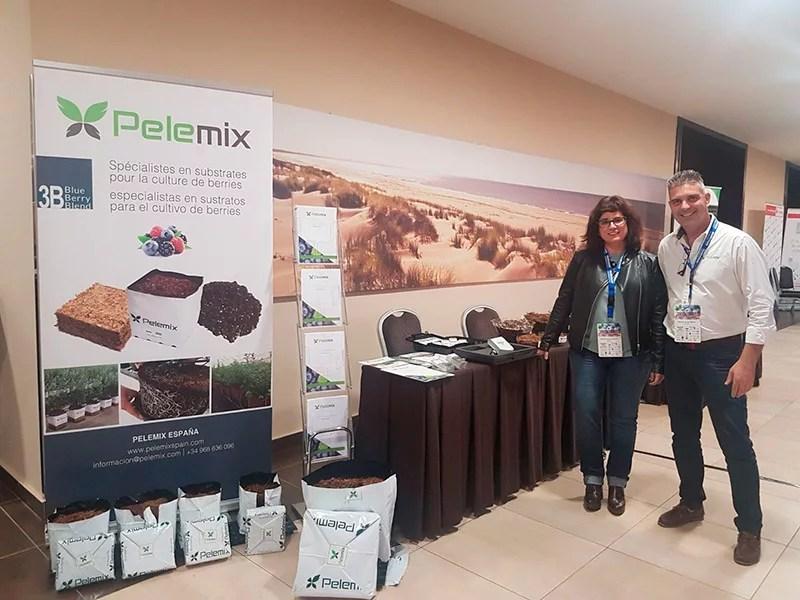 Pelemix presenta sustratos para berries, frutos rojos, Huelva.