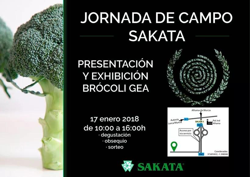 Jornada-de-campo-de-brocoli-de-Sakata