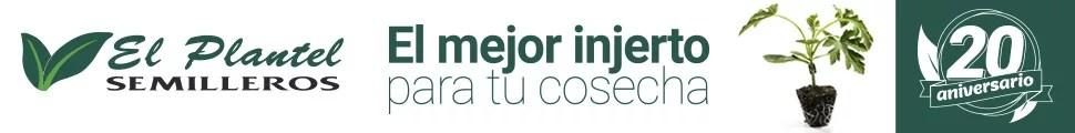 Cabecera Semilleros El Plantel 970×120