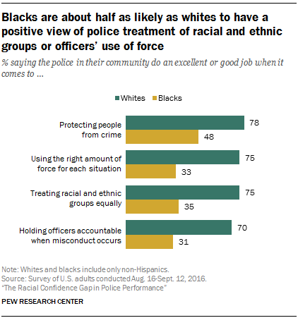 pew-views-of-police