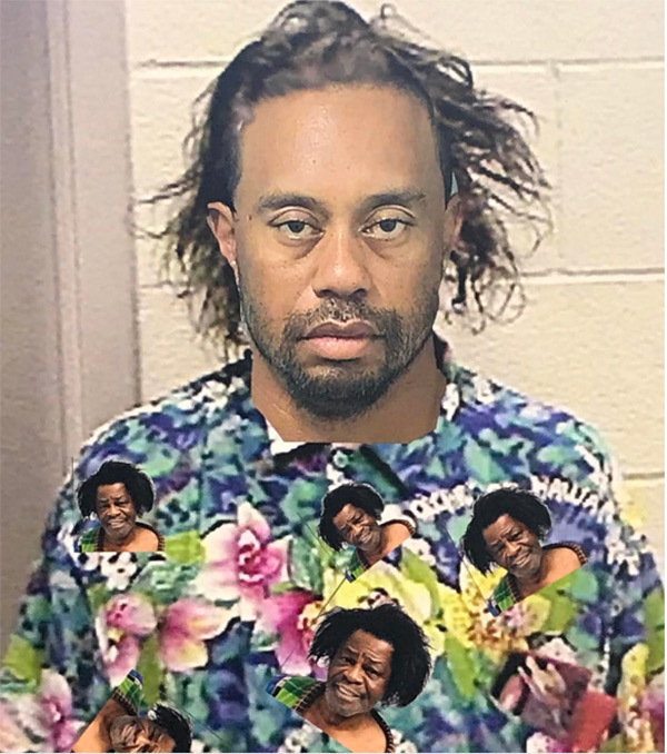 In one meme, Tiger Woods' mugshot is photoshopped to compare him with a similar shot taken of James Brown. (Credit: hollywoodlife.com)