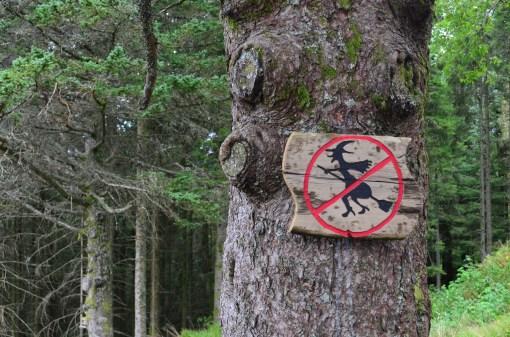 Гномам, значит, можно, а ведьмам нельзя.