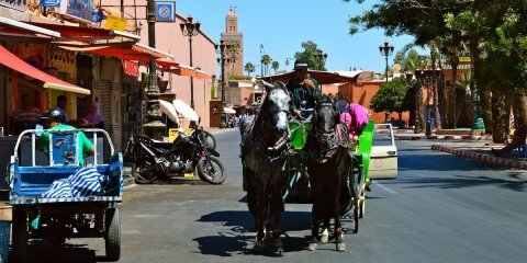 Travel Experiences in Morocco