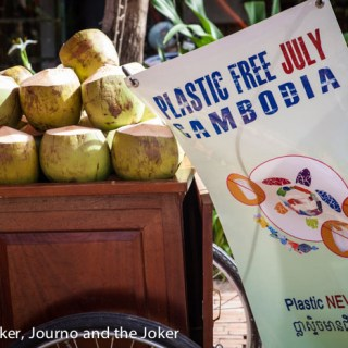 Coconuts at Plastic Free July launch