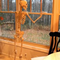 HALLOWEEN DECORATIONS - Welcome to our Haunted Home Tour