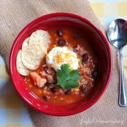 chicken salsa and black bean soup3