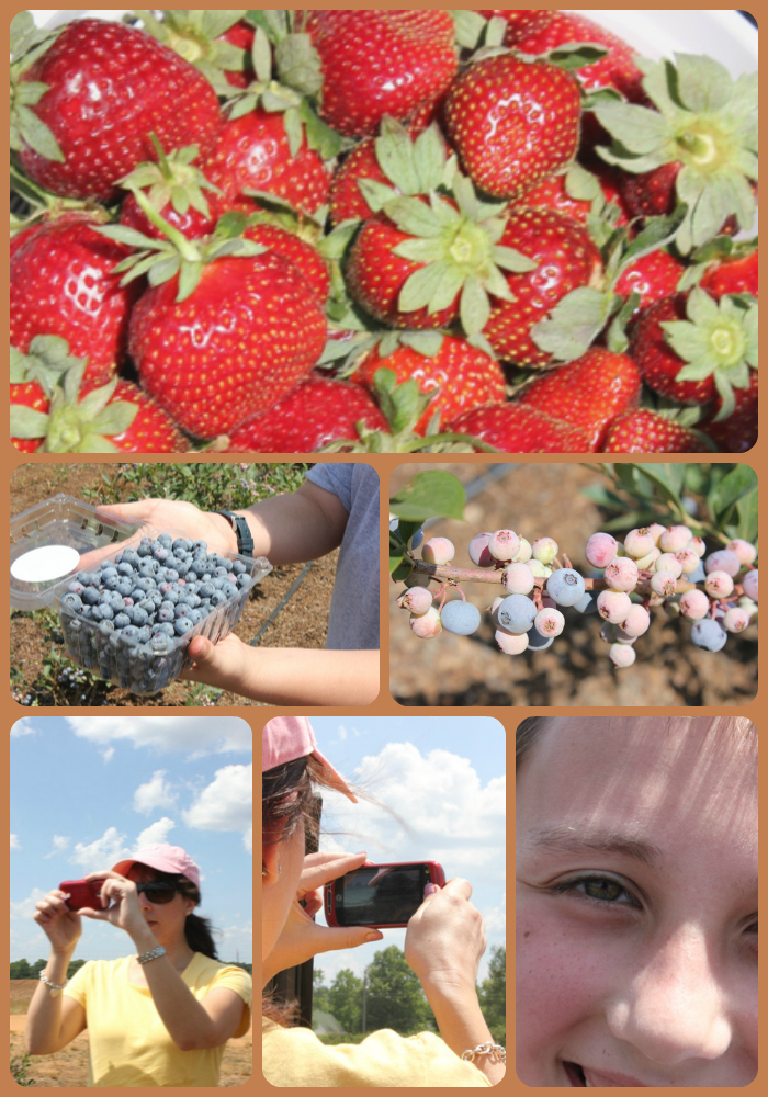 A berry nice time last summer.