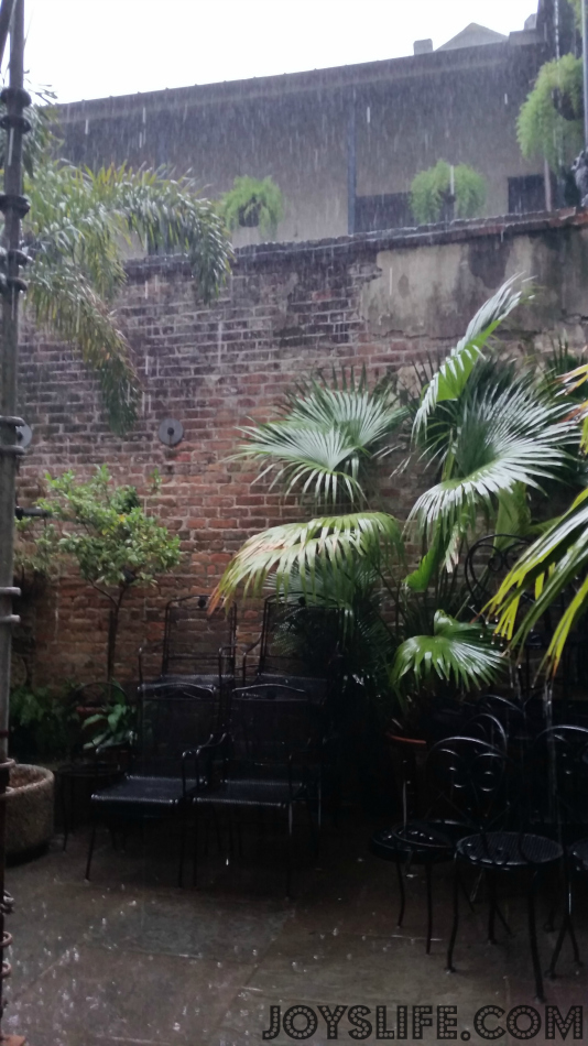 Mom & Daughter Trip to New Orleans Day 3 Part 2 #NOLA #NewOrleans #FrenchQuarter #NapoleonHouseRestaurant #Muffaletta #PimmsCup #courtyard #roadtrip