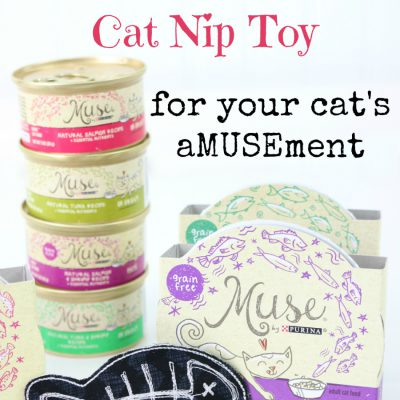 How to Make an Embroidered Cat Nip Toy