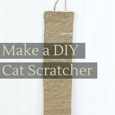 Make a DIY Cat Scratcher & New Cat Care Kit