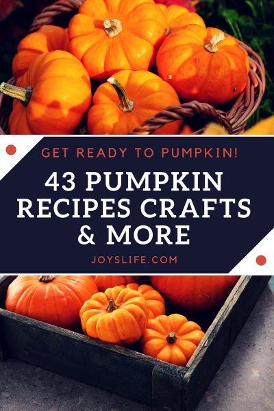 43 Pumpkin Recipes, Crafts & More