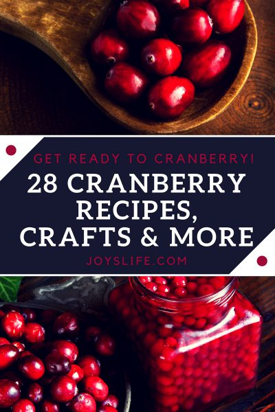 28 Cranberry Recipes, Crafts & More