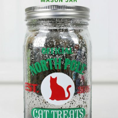 How to Use Vinyl to Create a Cat Treat Mason Jar