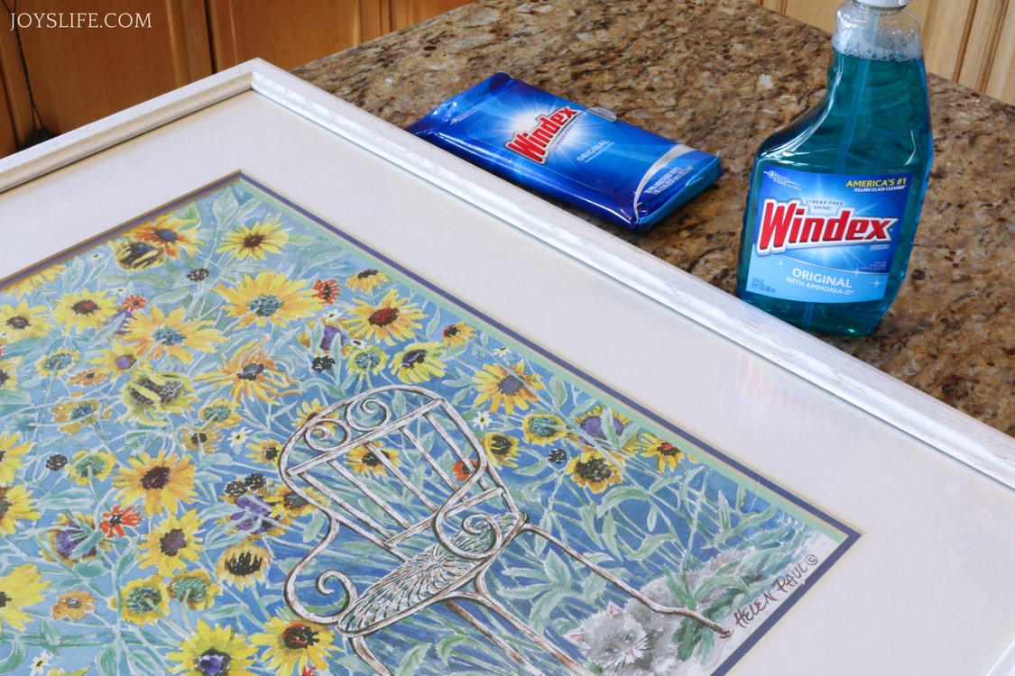Windex spray wipes