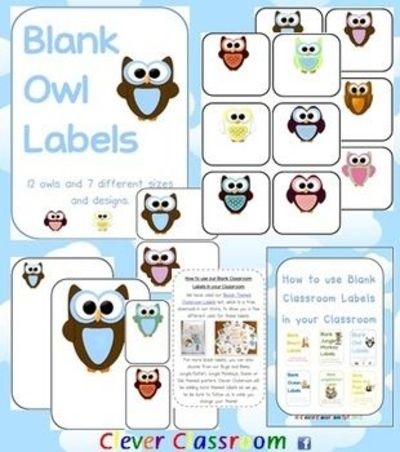 Owl Themed Blank Classroom Labels - PDF file - 48 pages, plu