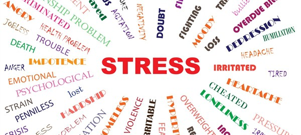 Stress Management How To Handle Stress?