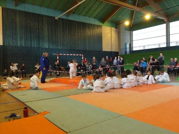 Démonstration des Eveil et Baby judo