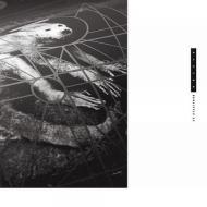 The Pixies // Doolittle 25