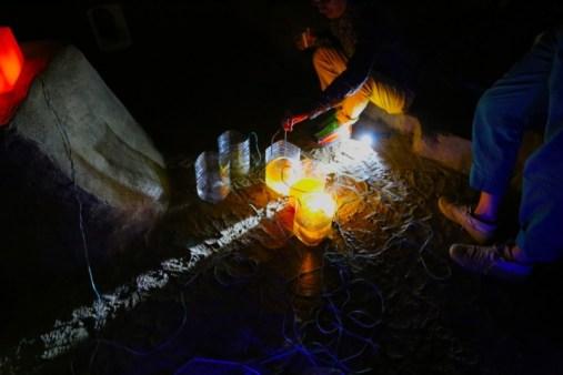 APE CAVE STRATUM FEEDING | JULES GIMBRONE 9