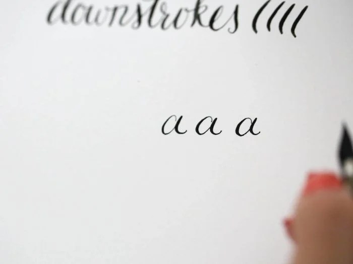Learn the Calligraphy Alphabet