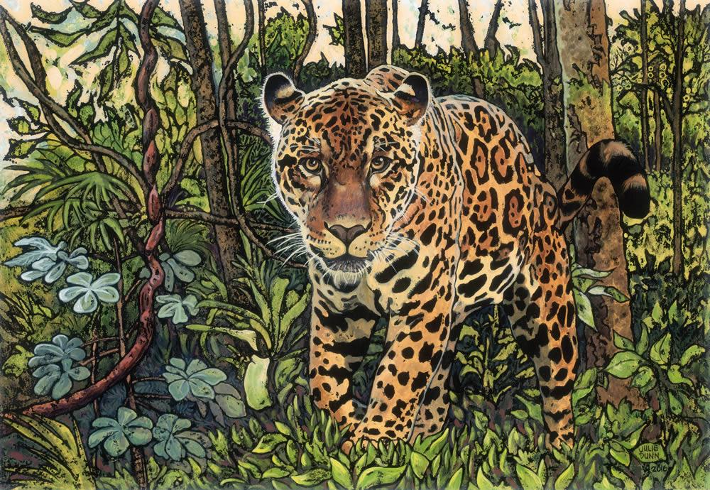 Watercolor Wallpaper Backgrounds Quote Amazonian Jaguar Julie Dunn Fine Art