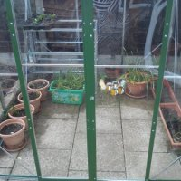 At Last - A Greenhouse!