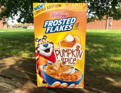 Fashionable Pumpkin Spice Frosted Flakes Pumpkin Spice Frosted Flakes Junk Banter Kellogg S Frosted Flakes 15 Oz Kellogg S Frosted Flakes Kosher