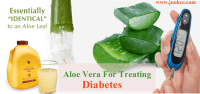 aloe-vera-for-treating-diabetes